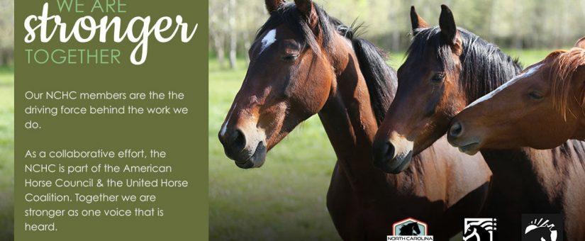 United Horse Coalition 2020 Virtual Meeting: Part 1