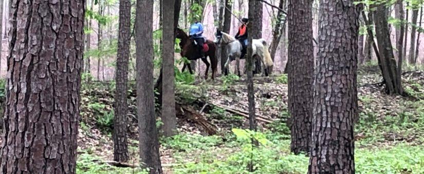 Mason Point Trail Opening